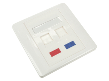 WALL PLATE 2 PORTS